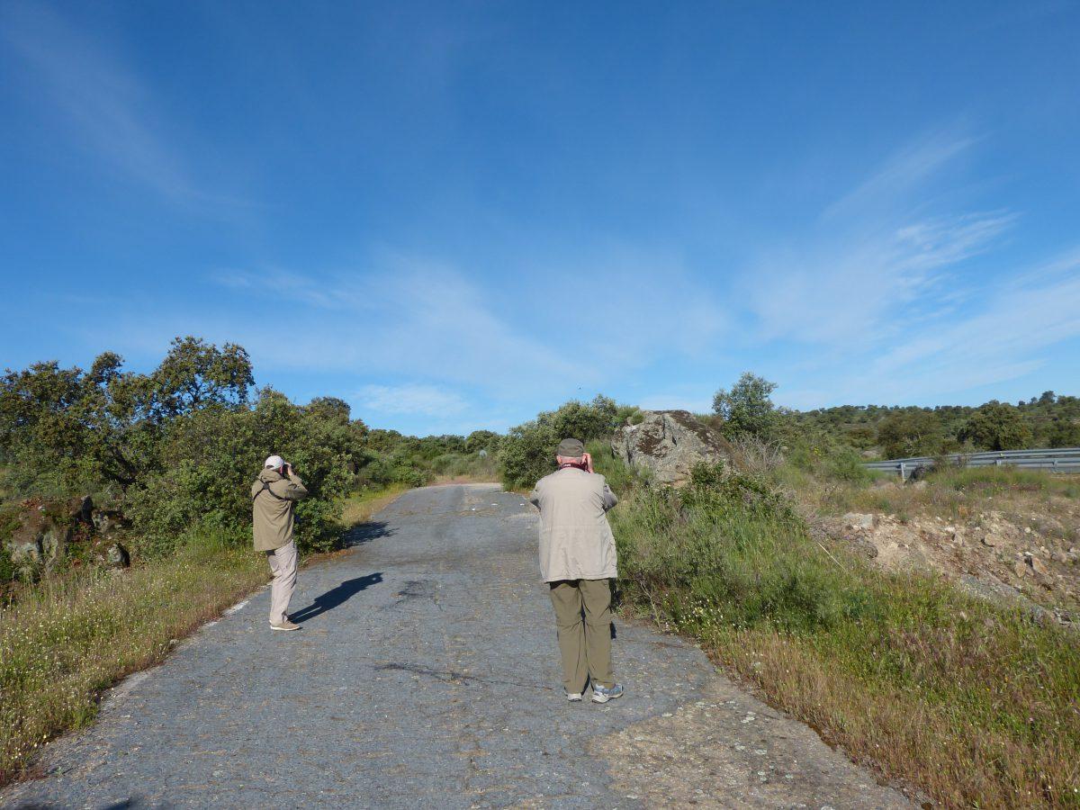Siegfried und Thorsten bei der Vogelbeobachtung in der Extremadura am 28.04.2014 Foto: Uwe Norra