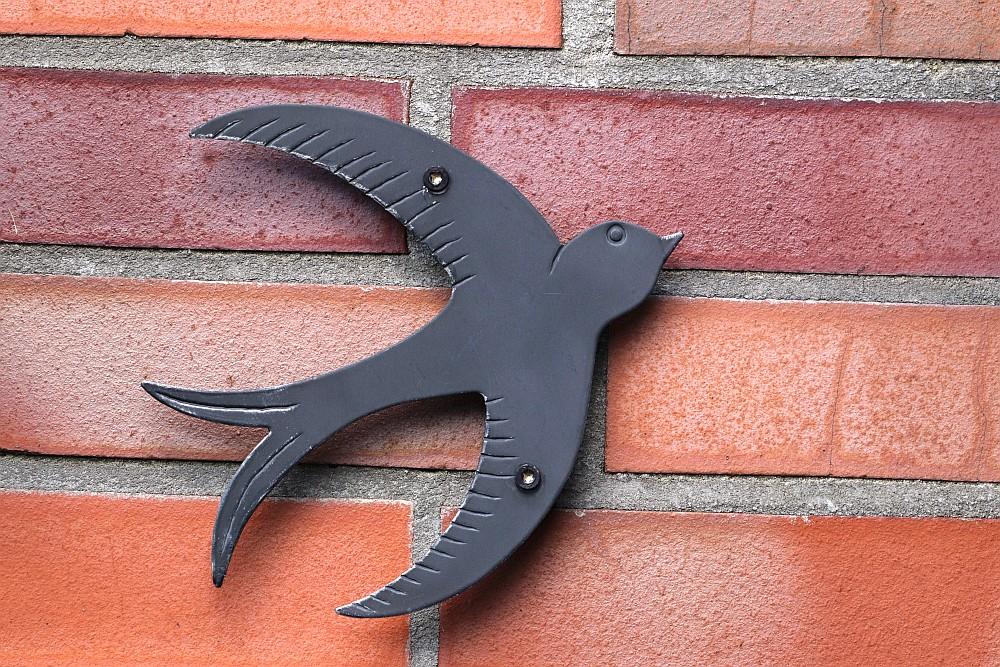 Der etwas statisch wirkende Mauersegler ist im eigenen Garten zu sehen :-) 01.04.20 Foto: Hartmut Peitsch
