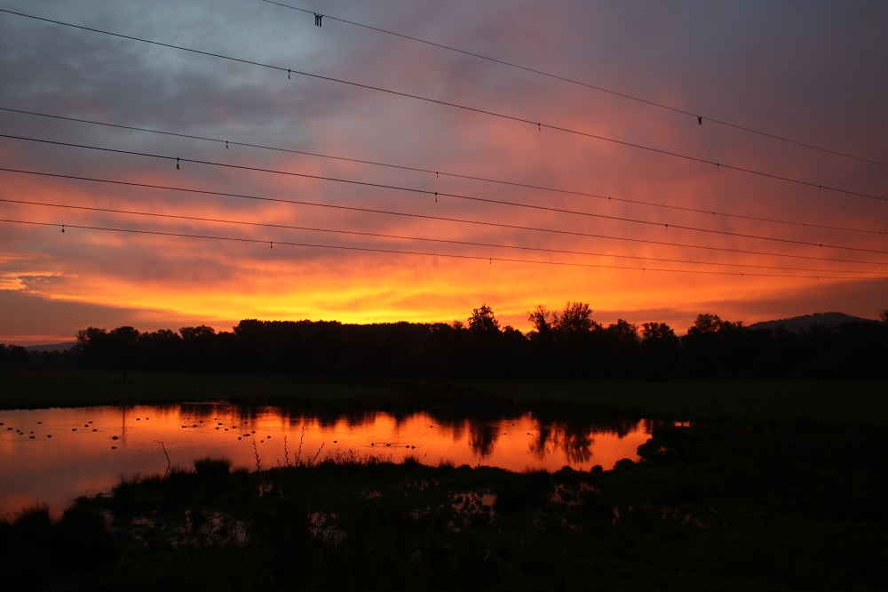 Kiebitzwiese vor Sonnenaufgang
