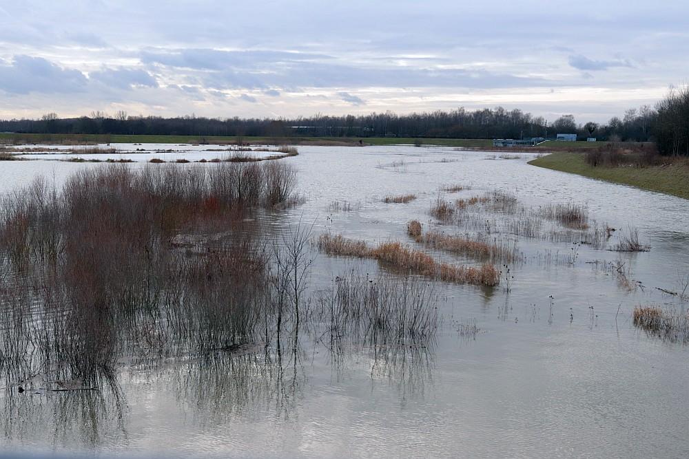 Hochwasser im HRB, 17.02.21 Foto: Hartmut Peitsch