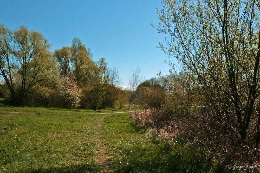 Himmelmann Park