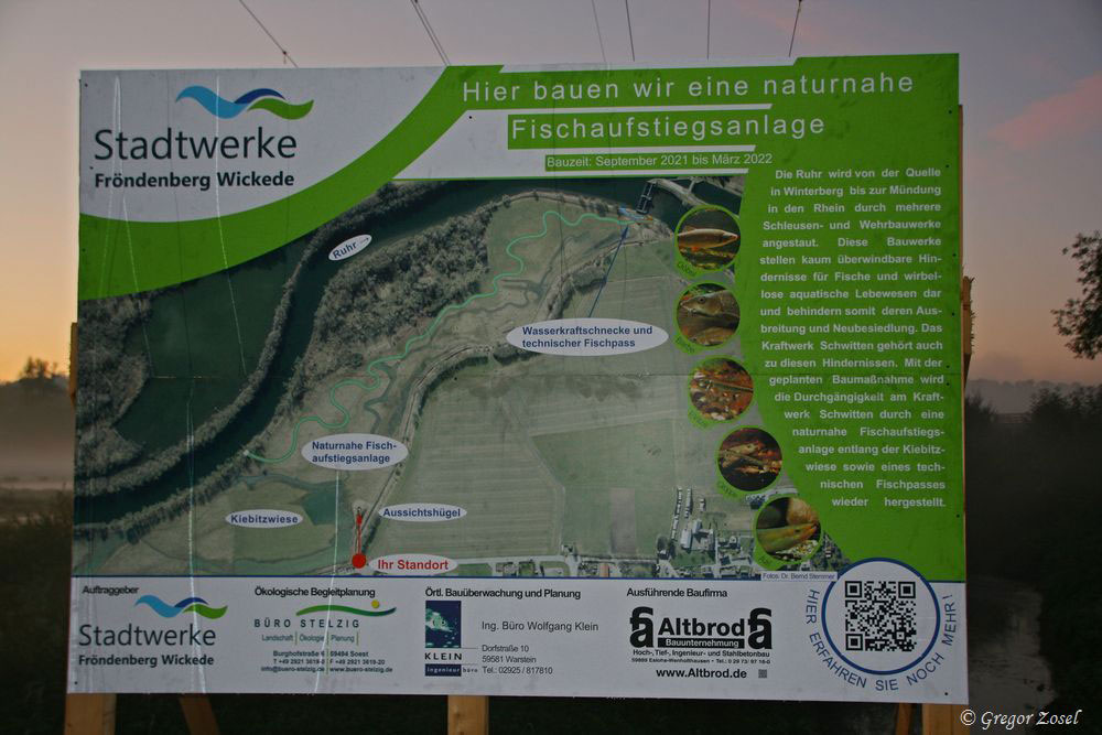 Kiebitzwiese